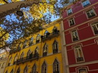 Beautiful architecture along Avenida da Liberdade